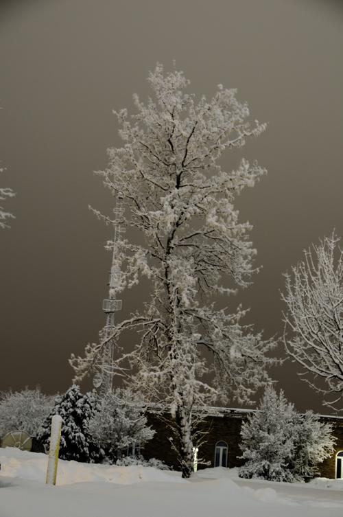 Night Snow Before Image