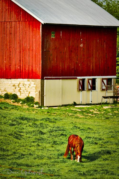 May Barn - 2011