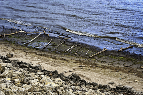 Some debris from the high river water