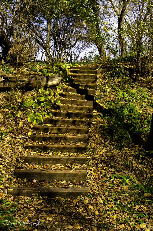 Stair steps at Hurstville Kilns