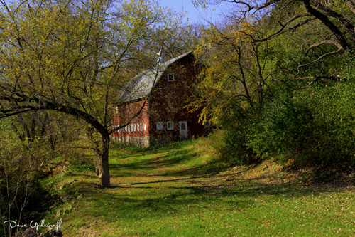 Fall Colors with a barn