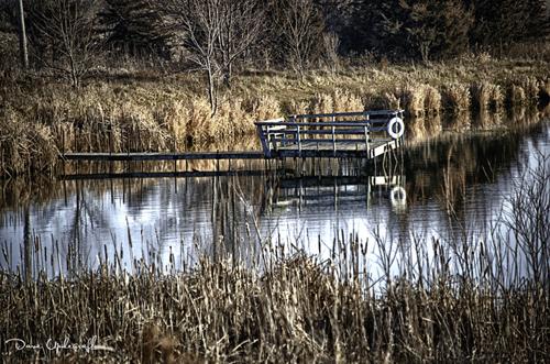 Dock on a pond