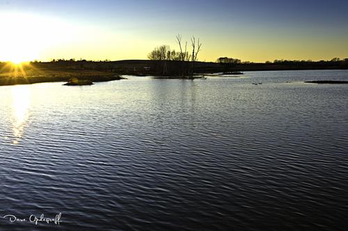 Hurstville Pond At Sunset