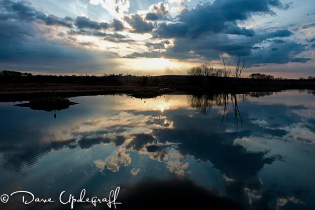 Sunset over Hurstville