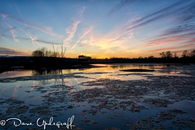 Pretty sunset at Hurstville Marsh