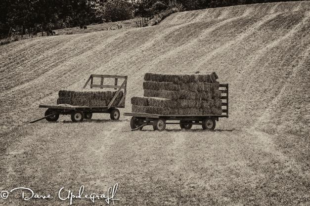 Farm Hay Wagons