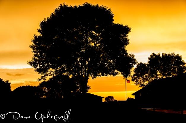 BackYard Sunset - 2012