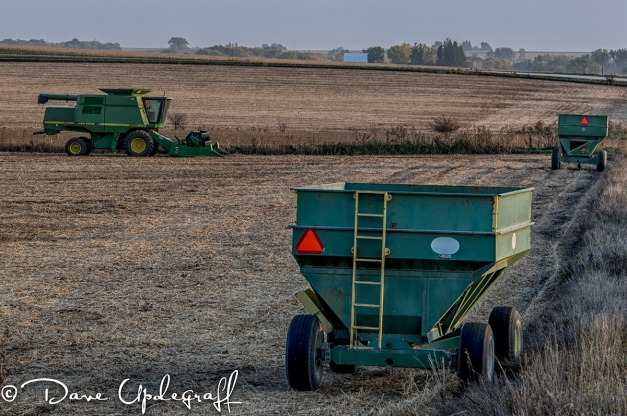 Farm Harvest Scene