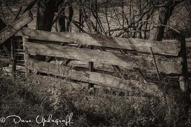 Old Field Gate