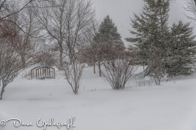 December 20th 2012 Blizzard