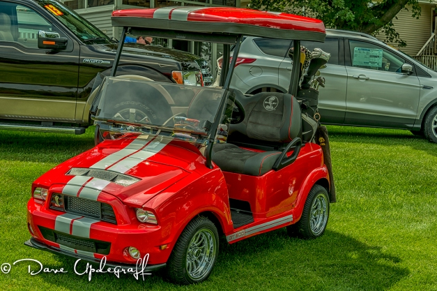 Shellby Golf Cart