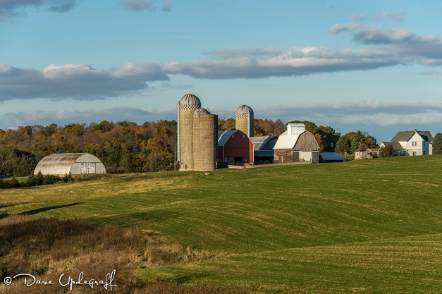 A farm Scene