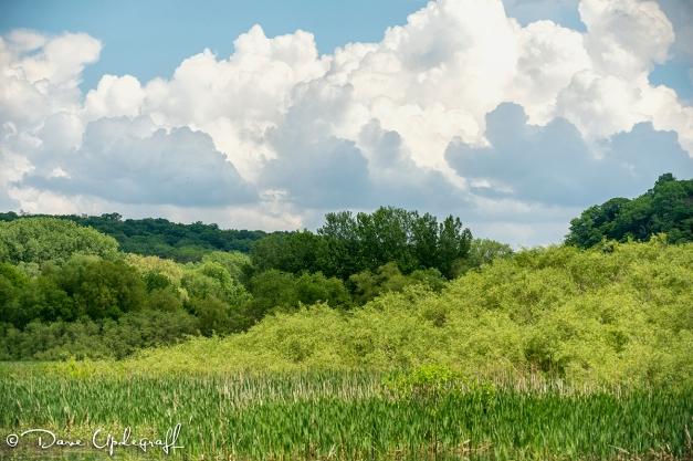 Green Island, Iowa