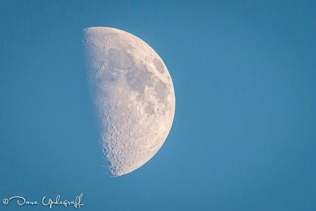 September Moon