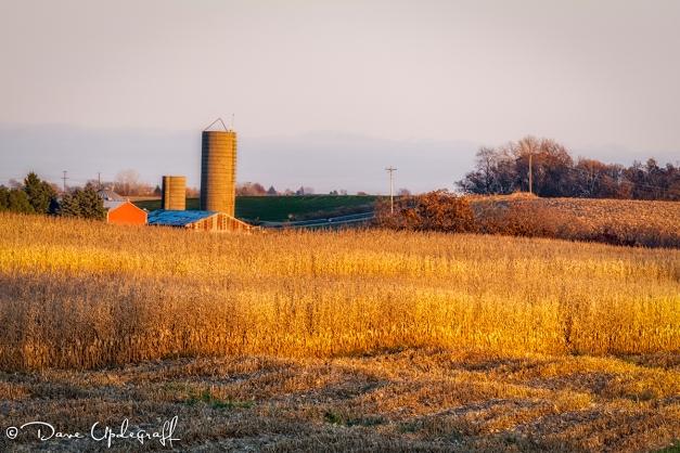 Farm at sun set