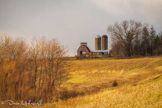 November Farm Scene