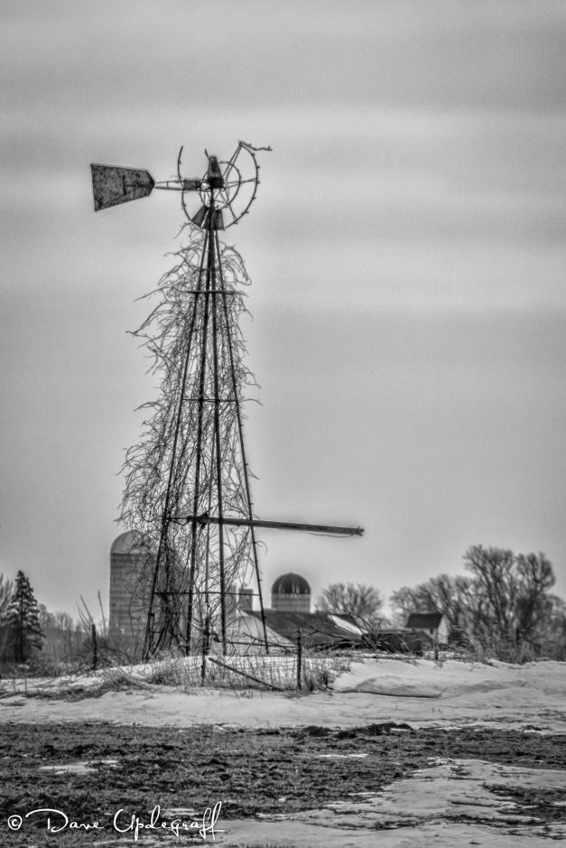Retired Windmill